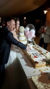 Il WEDDING CAKE LIVE SHOW-MATTEO ANDOLFO 19